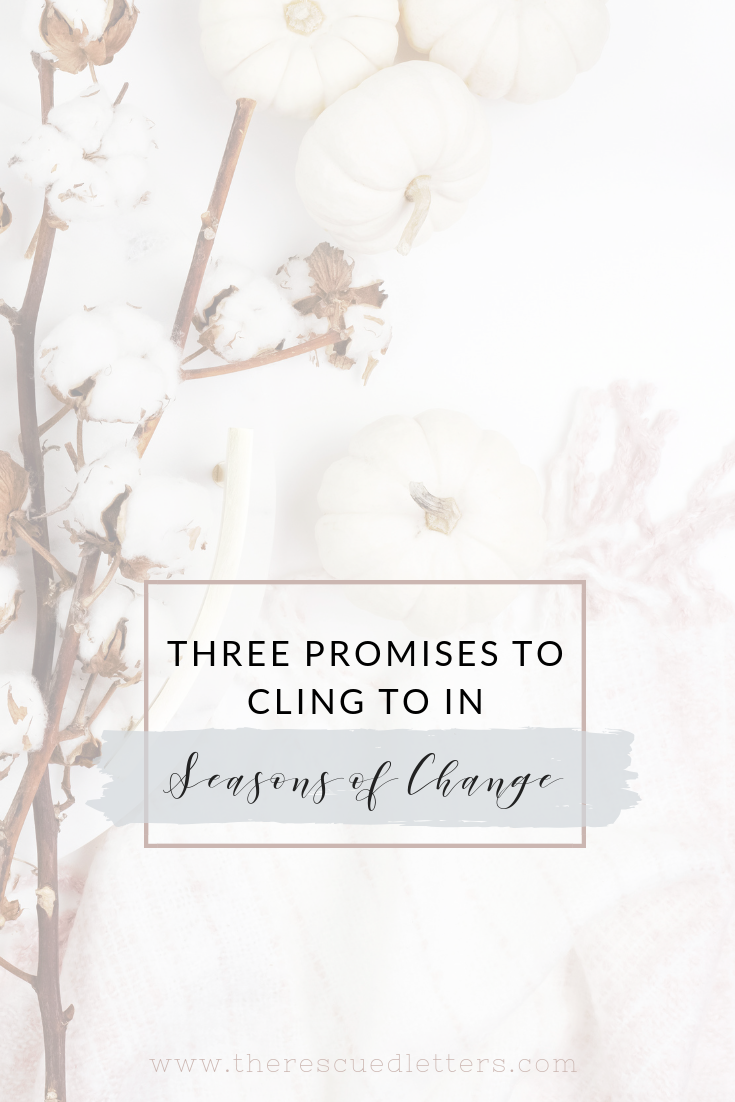 As much as we may want things to stay the same, change is unavoidable. When the winds of change are blowing around me, these three promises help keep me grounded. #biblestudy #godsword